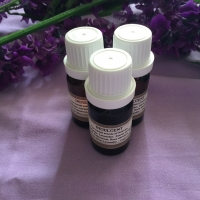 Indulgent Essential Oil - 10ml
